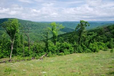 Arkansas hills
