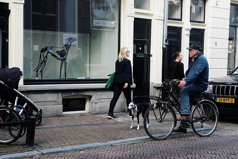 A guy interrupts his bike ride with his dog, to contemplate about a dog sculpture in the store front. Stories like this are on every corner.
