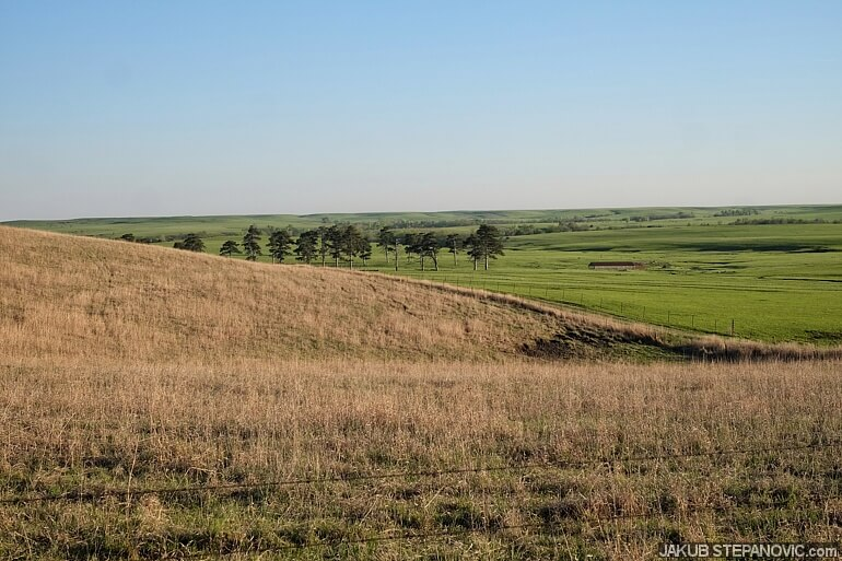 See, all the tall brown grass in the foreground is an old one from last year(s), while the pasture in the background was burned about a month ago, and is all green by now.