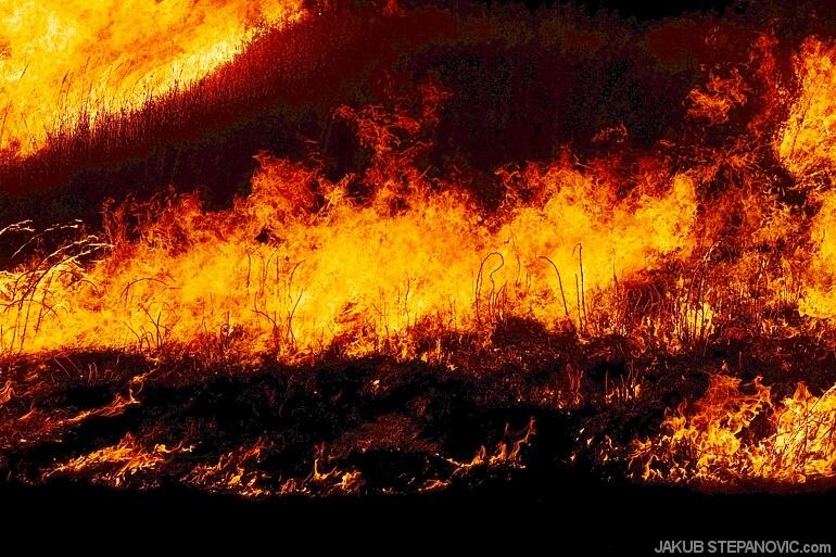 Hills on Fire (15)
