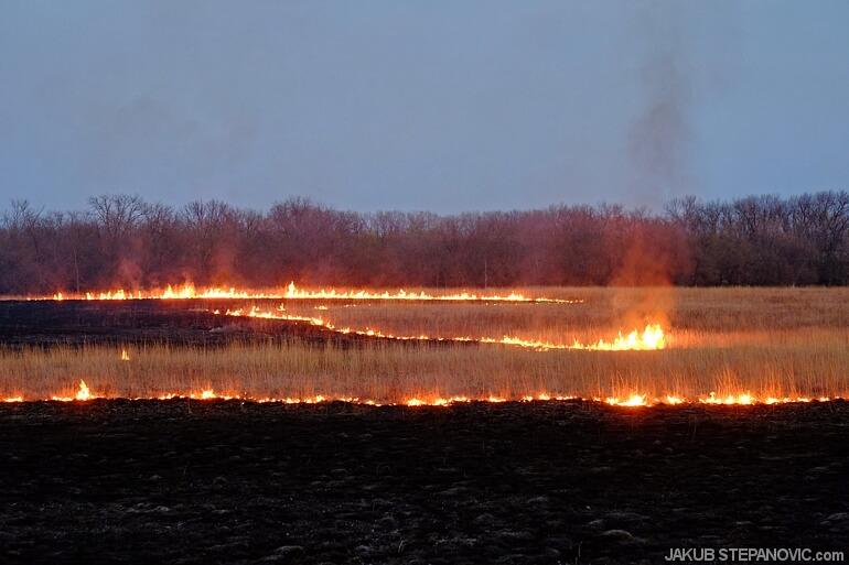 Hills on fire (1)