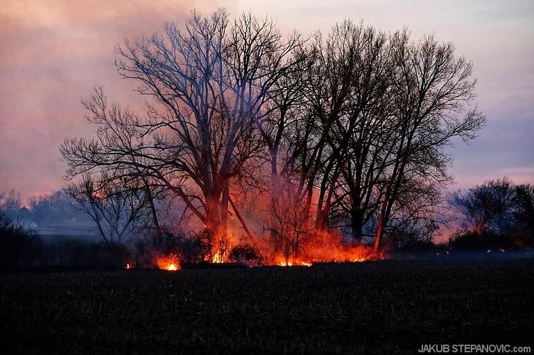 Hills on fire (3)