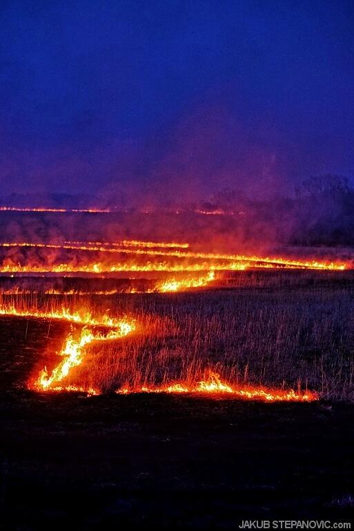 Hills on fire (7)