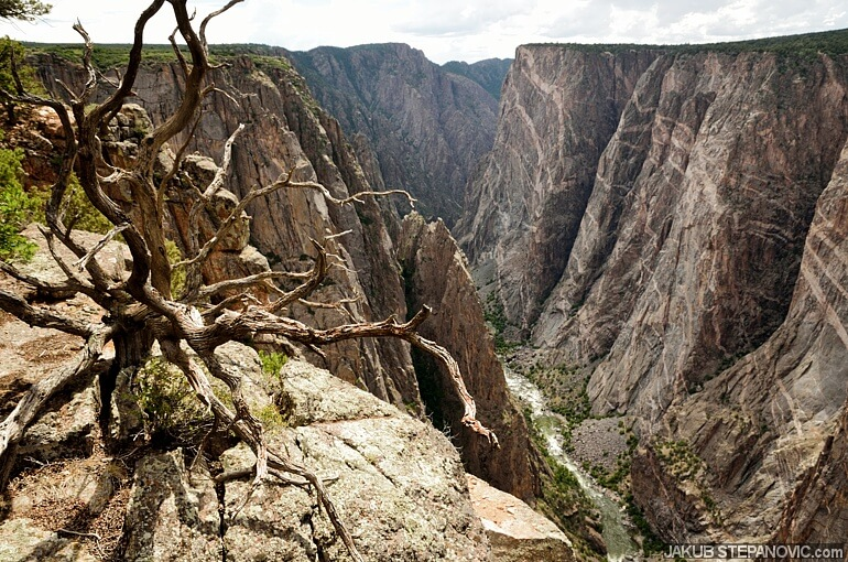 Black Canyon Of The Gunnison (1)
