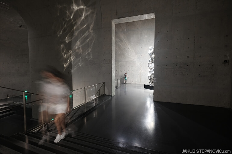 """""""Zhan Wang: Forms in Flux"""""""